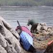 #GNvdD: gestrande orka in leven gehouden door Canadese hulpverleners