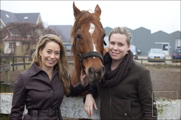 Paardenopvang Amsterdam