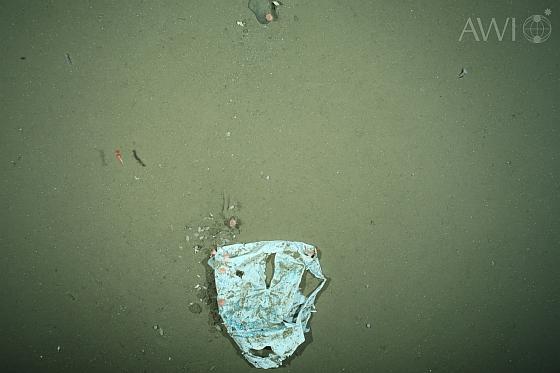 Plastic afval op de bodem van de noordelijke wateren