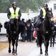 Politiepaarden mishandeld door FC Twentefans