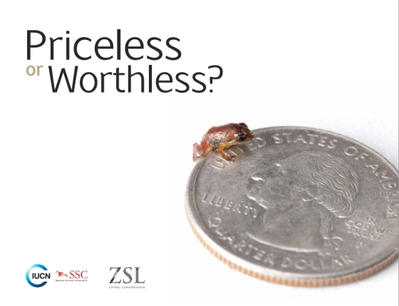Rapport Priceless or Worthless