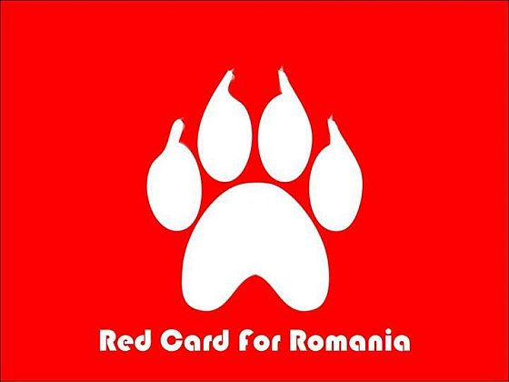 Red card Romania - rode kaart