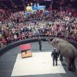 #GNvdD: Circusolifanten met vervroegd pensioen