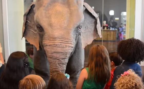 robotolifant