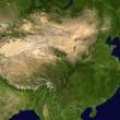 Voedselverspilling en recycling in China: Een groeiende trend?
