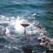 Maak dolfijnenslachting breekpunt tijdens handelsmissie Japan
