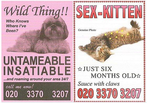 Sterilisatie reclame