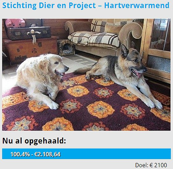 Stichting Dier en Project