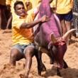 Teken tegen feesten met stieren en andere dieren in India