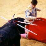 Stierenvechten - anti-stierenvechtgemeenten