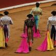 #GNvdD: Colombia opent deur voor verbod op stierenvechten