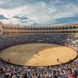 Sencelles, Mallorca: nieuwe anti-stierenvechtgemeente