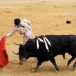 Teken petitie tegen Europees subsidiegeld naar het stierenvechten