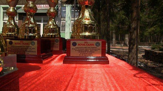 Gesponsorde trofeeën - April 2013 - beergevechten