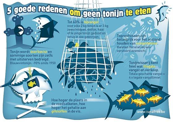 Tuna Free Infographic