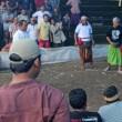 Ingezonden brief: Vechthanen op Bali