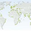 Verspreiding mangrovebossen, zeegras en zoutmoerassen over de wereld