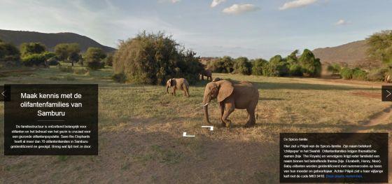 virtuele safari