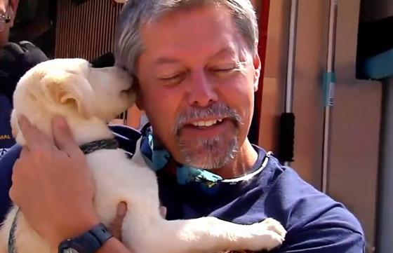 meer dan 30 honden gered