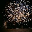 PvdD: jaarwisseling uiterlijk in 2020 vuurwerkvrij!