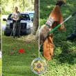 #GNvdD: Wasbeer bevrijd uit pindakaaspot