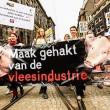 Manifestatie tegen de intensieve veehouderij en megastallen