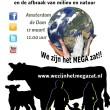 Interview: Estera Waas van wezijnhetmegazat.nl