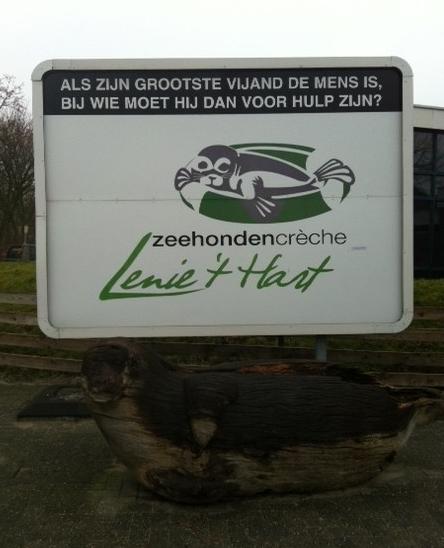 Zeehondencrèche Pieterburen