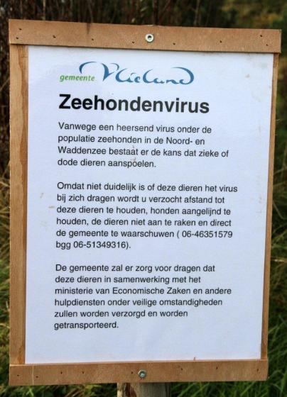 griepvirus